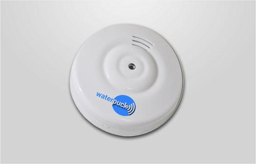 Waterpuck Water Alarm